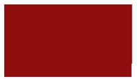Logo-IVV-Lyon